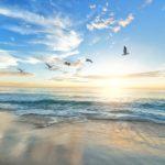 解放感,束縛からの解放,自由を意味する「空を飛ぶ夢」11診断